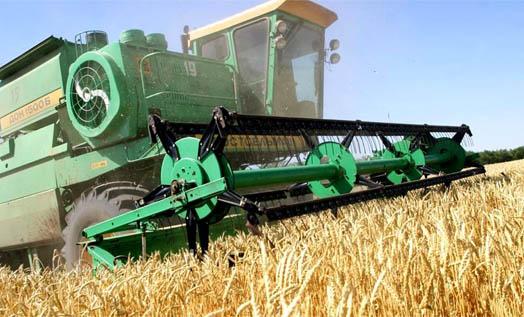комбайн в поле убирает зерновые