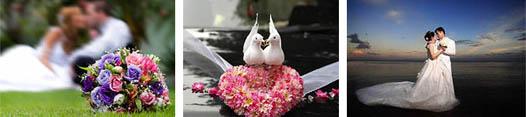 торжество любви на свадьбе