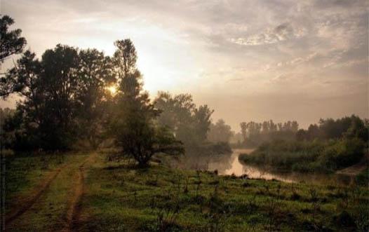 Картинки природа полтавская